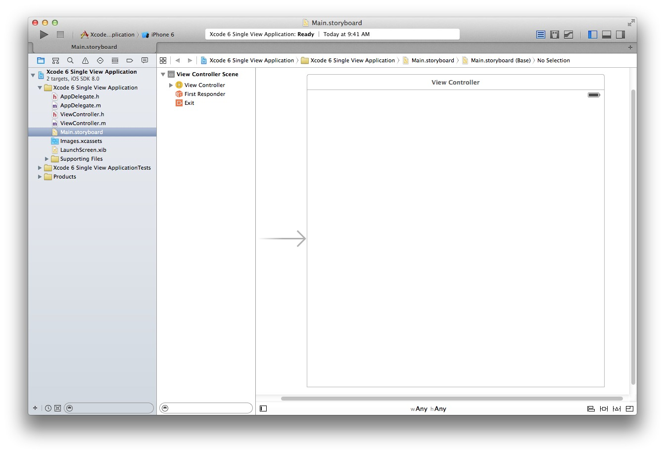 Xcode 6 Single View Application